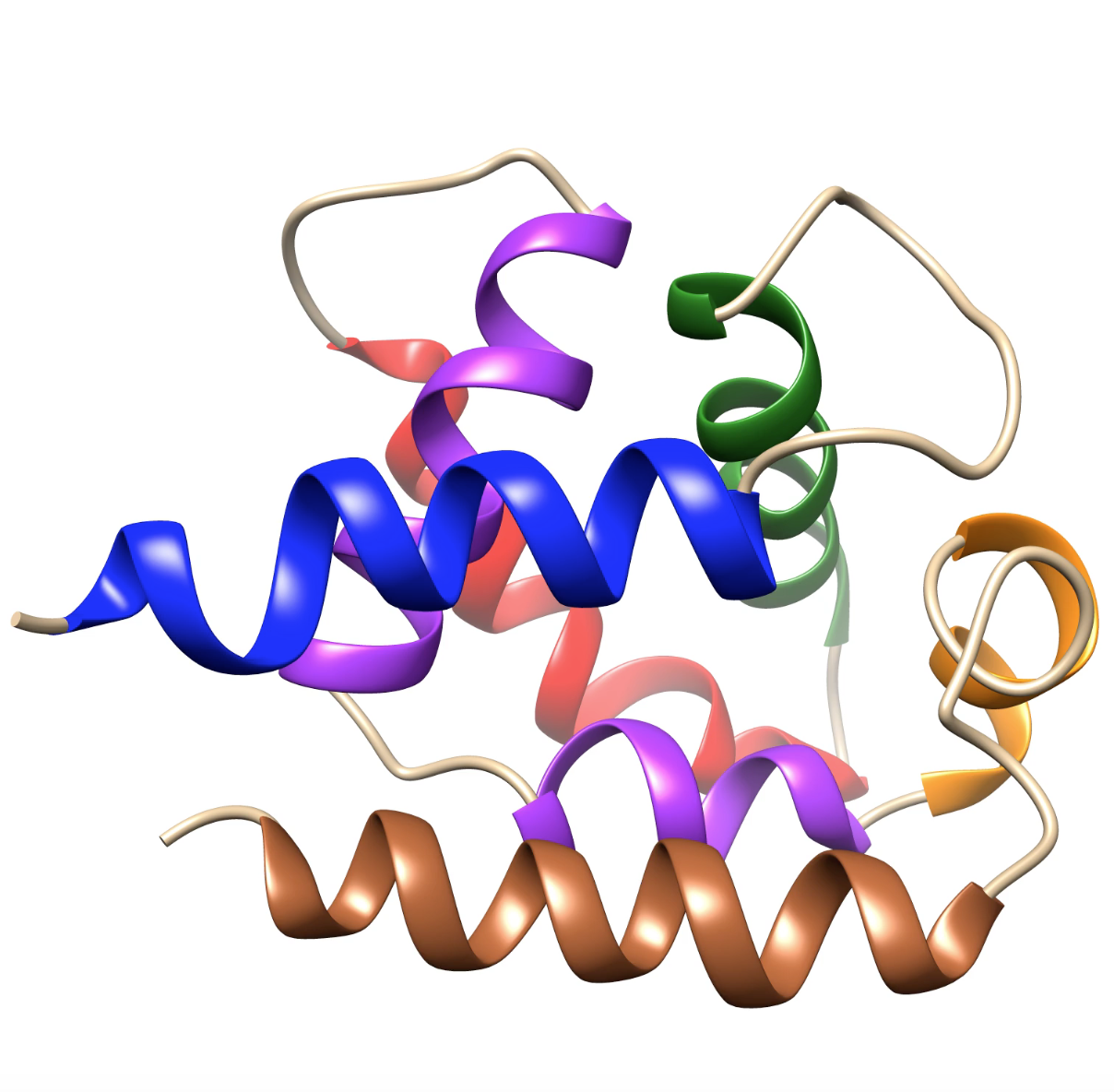 Extensive computer simulations investigate VPS34-Rubicon protein-protein interaction in autophagy